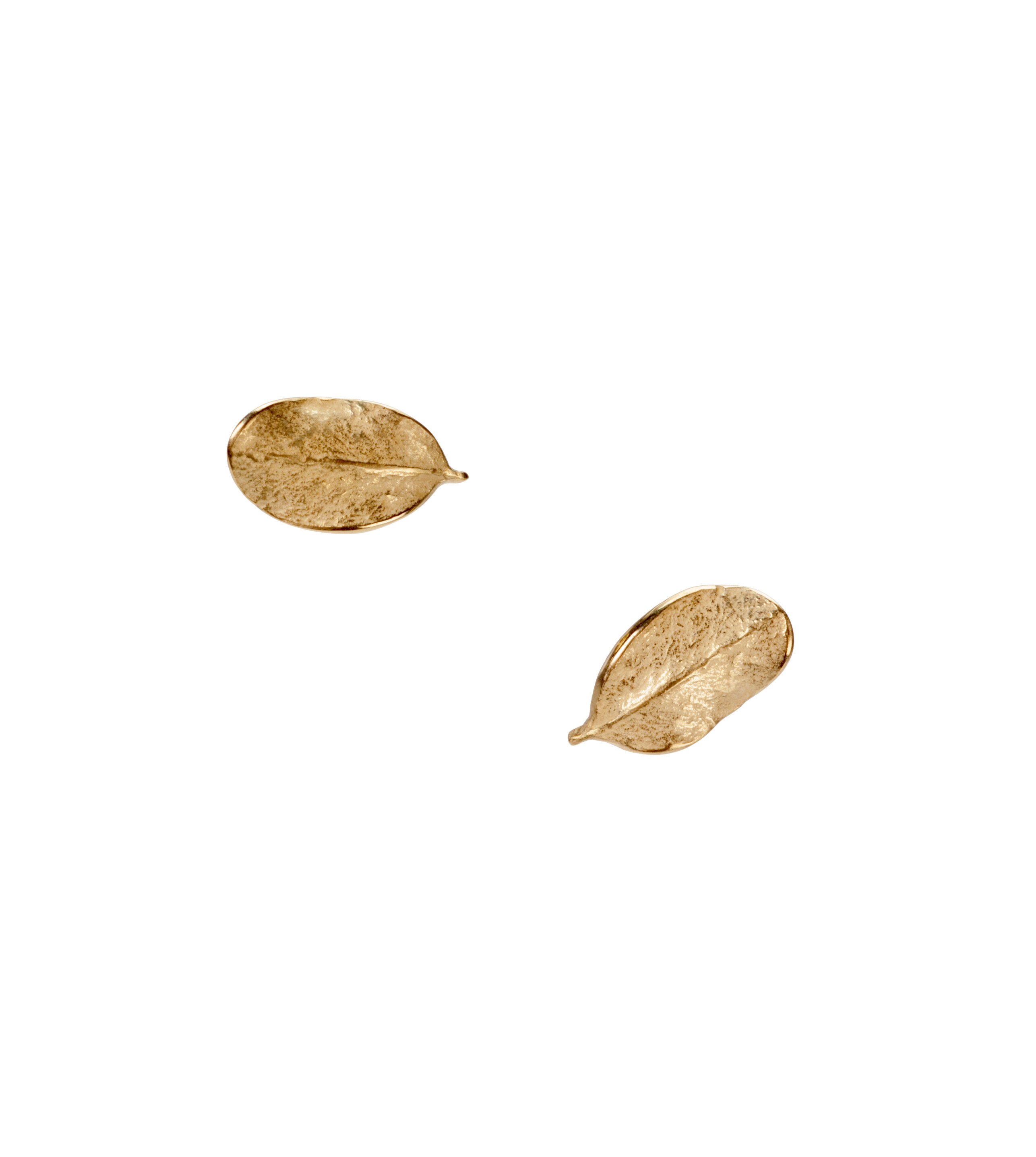 Small boxwood leaf stud earrings